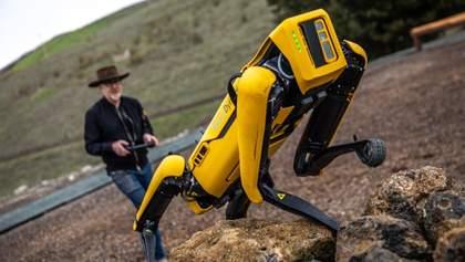 Робопса Spot від Boston Dynamics почали продавати у Європі: ціна