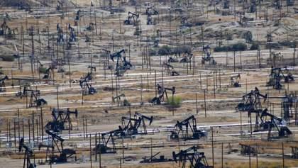 Цены на нефть нестабильные из-за усиления урагана в США и событий в Ливии: что об этом известно