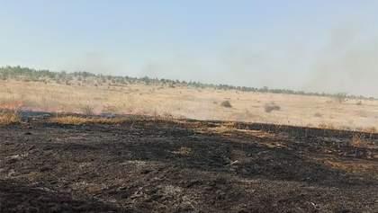 Масштабна пожежа спалахнула в заповіднику Миколаївщини: фото