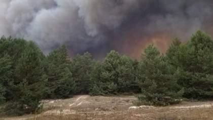 Вогнеборцям вдалося локалізувати масштабну пожежу на військовому полігоні під Києвом