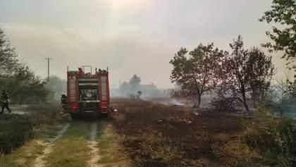 На Луганщині окупанти підпалюють траву на ділянках лінії розмежування: наслідки пожеж – відео