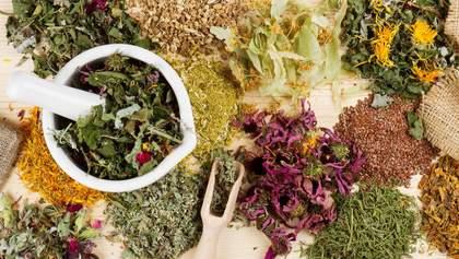 ВОЗ позволила тестировать лекарственные травы против коронавируса: почему это странно