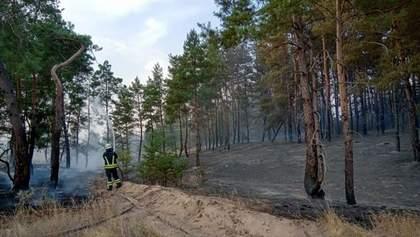 На Луганщині знову спалахнула пожежа: горить 20 гектарів лісу