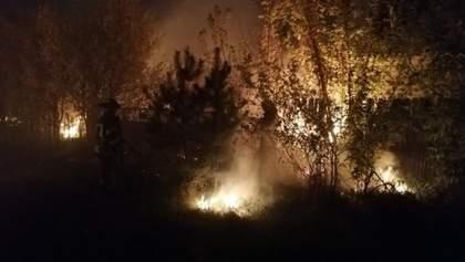 Пожежі на Луганщині є провокацією російських бойовиків – ООС
