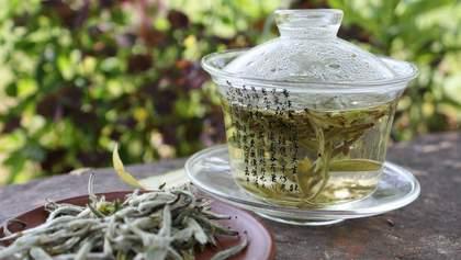 Полезные свойства белого чая: интересные факты, которые вы могли не знать