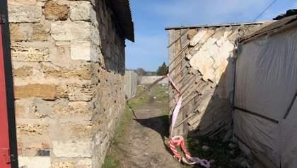 На Херсонщині знайшли мертвою 7-річну Марію Борисову