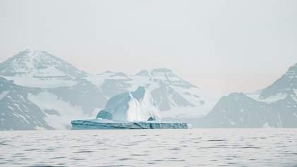Арктика може знову стати зеленою, – вчені попередили про наслідки потепління
