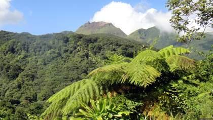 Взрывная стадия: жителей Сент-Винсента и Гренадин эвакуируют из-за проснувшегося вулкана