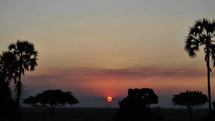 Танзания изменила правила въезда: новые требования
