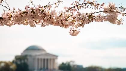 Вашингтон ослабляет карантин: какие заведения возобновят работу и когда