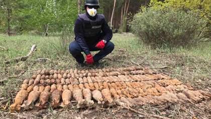 За три дня раскопок в лесу на Донетчине нашли почти полтысячи снарядов Второй мировой