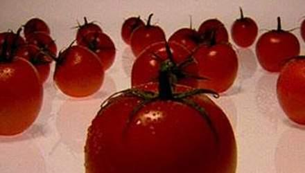 Ученые превратили обычный помидор в хай-тек продукт