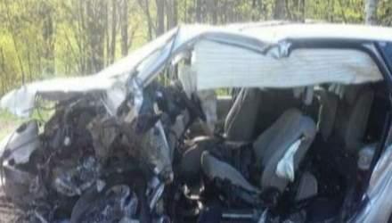 Ефект свідка: водій BMW не впорався з керуванням на узбіччі і вилетів у Renault