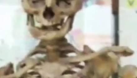 Ученики румынской школы изучают анатомию по скелету бывшего директора