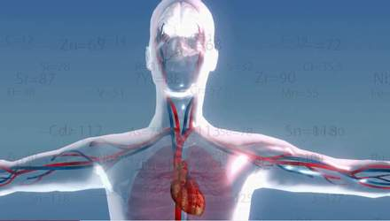 Факти про здоров'я. Калій і магній – без чого не може наш організм
