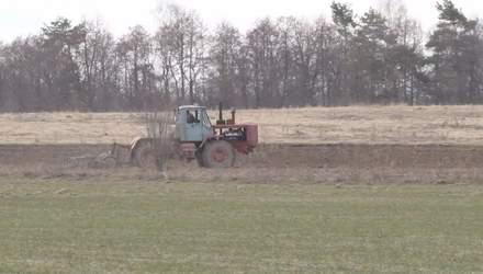 В Украине станет меньше посевных площадей