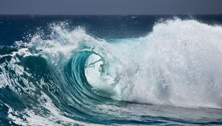 Женщина выжила после 20 часов проведенных в открытом океане