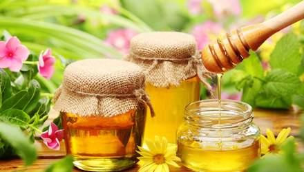 Как увеличить объемы производства меда и повысить его качество