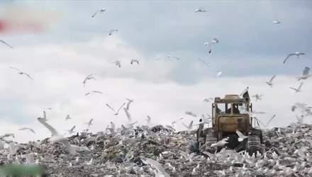 Топ-5 мифов о мусоре и почему проблема в Украине не решается