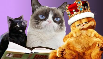 До міжнародного дня кота: найвідоміші улюбленці в кіно