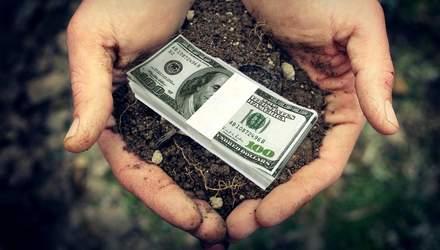 Заборонений плід: кому в країні не можна торгувати землею
