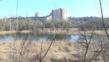 Забудова Совських ставків: хто з депутатів хоче загарбати ласий шмат землі у Києві