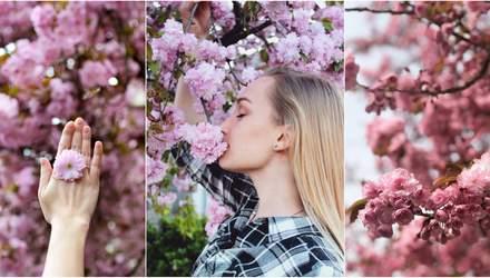 Сакури в Ужгороді 2018: як місто потонуло в рожевому цвіті, – фото з соцмереж