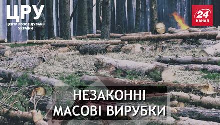 Хто стоїть за нищівним руйнуванням українського Полісся
