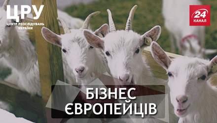 Чому для європейців  ризикований бізнес на українській землі