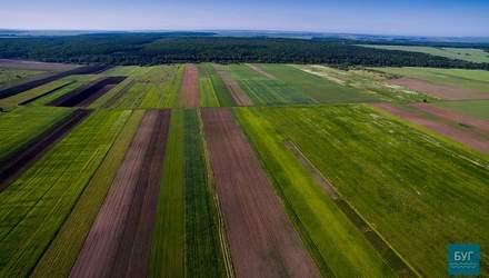 Неймовірна Україна: як виглядають волинські села з висоти пташиного польоту