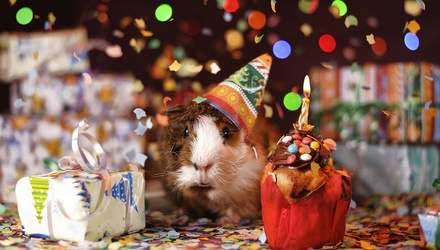 З днем народження: красиві привітання у прозі та віршах