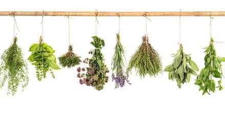 Как появились первые рецепты травяных настоек Клима Житника