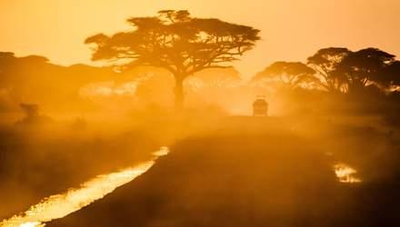 Науковці вказали на страхітливу аномалію в Африці