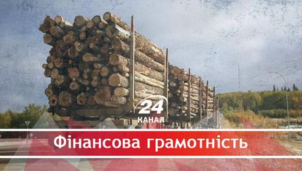 Почему украинский лес продолжают вырубать и експортировать даже после официального запрета