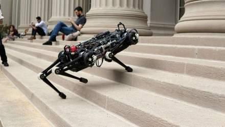 """Американці створили """"сліпого"""" робота-гепарда: які його функції"""
