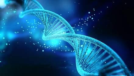 П'ята частина генів людині не потрібна: пояснення
