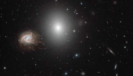 Hubble сделал детальное фото созвездия Волосы Вероники