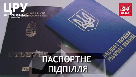 """Телеканал у консульстві, або план """"Б"""" по-угорськи: чим закінчиться скандал із паспортами"""