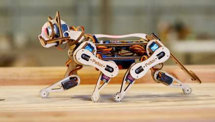 Создали роботизированную кошку, которая может учиться