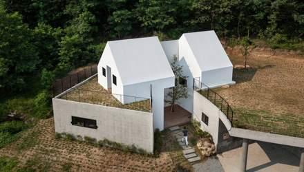 Дім навколо дерева: як виглядає будинок, буквально наближений до природи
