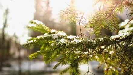 29 листопада – яке сьогодні свято та що не можна робити в цей день