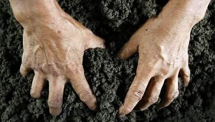 Топ мифов о пользе моратория на землю, которыми вас кормят депутаты и чиновники