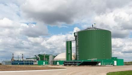 Газ з відходів: Ukrlandfarming Бахматюка виступає за екологічну електроенергетику