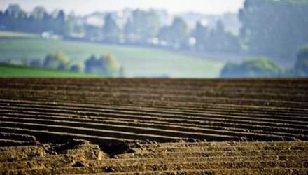 Верховная Рада продлила мораторий на продажу земли