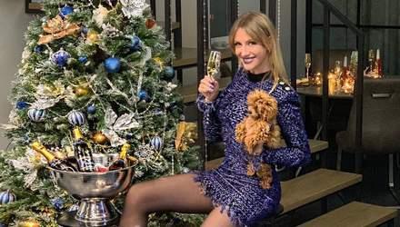 Бий посуд – я плачу: Леся Нікітюк розповіла про неприємний інцидент перед Новим роком