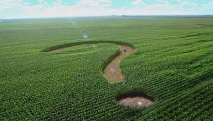 Как мораторий на рынок земли в Украине играет на руку Кремля