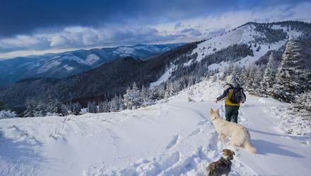Заблукалі у горах на Львівщині: з'явилась інформація про стан врятованого туриста