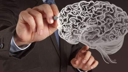 Розумові здібності людського мозку залежать від жирів: дослідження