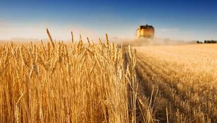 Как изменился украинский аграрный экспорт в 2018 году: интересные данные