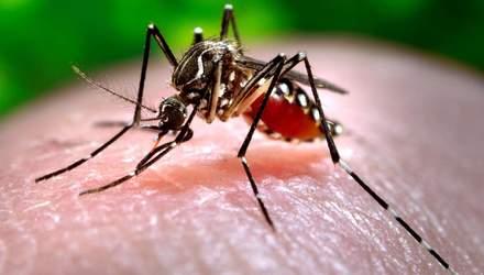 В Україні зафіксували новий випадок небезпечної тропічної хвороби